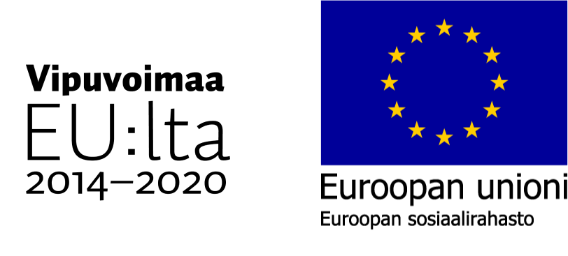 Vipuvoimaa EU:lta 2014-2020, Euroopan sosiaalirahasto